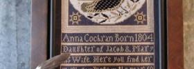 Anna's Bird by Kathy Barrick