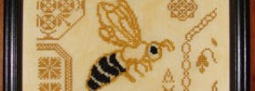 Quaker Bee from AuryTm